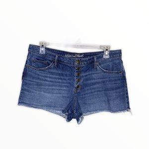 High Rise Shortie Raw Hem Denim Shorts
